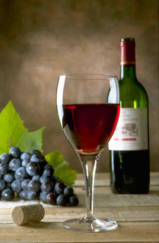 Investir dans le vin: un excellent placement